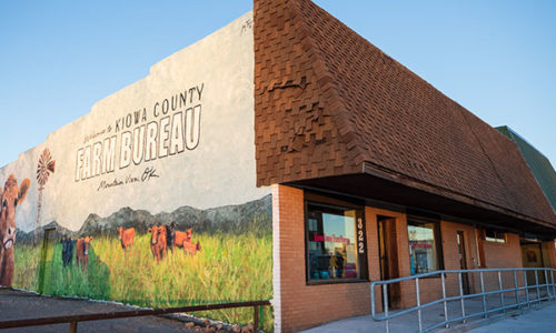 Kiowa County Farm Bureau Office - Mountain View